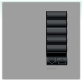 Lutron International seeTouch QS Control de pared 5 Botones con R/L y receptor IR sin insert