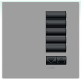 Lutron International seeTouch QS Control de pared 5 Botones con R/L sin insert