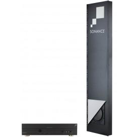 Sistema de bajos VP12SUB NC (2 subwoofers, 2 gabinetes, 1 amplificador)