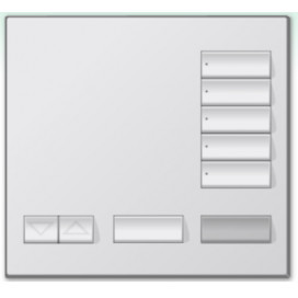 Control Inalambrico Lutron homeworks 5 Botones Color SW