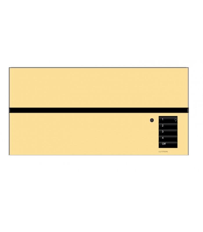 Placa GrafikEyeQS 0 Shades Metales con grabado