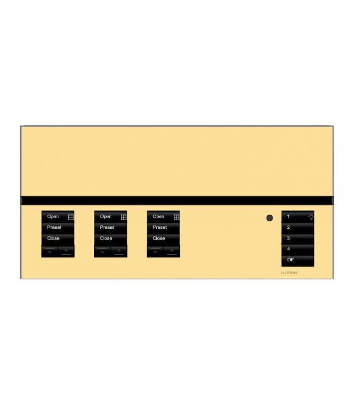 Placa GrafikEyeQS 3 Shade Metales con grabado